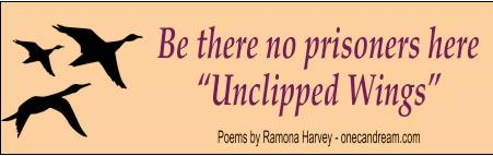 """Unclipped Wings"" Bumper Sticker - Be there no prisoners here"